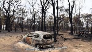 En bil som totalförstördes i bränderna i New South Wales.