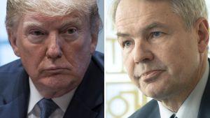 Bildmontage med Donald Trump och Pekka Haavisto i närbilder.