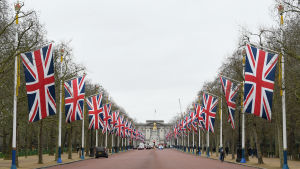 Flaggparad i London inför den stora brexitdagen