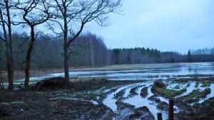 Kokemäenjoki tulvii pellolle Kivinissä 9.2.2020.