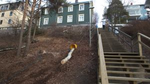 Puunrunkoa raahataan ylös rinnettä Tampereen Pispalassa