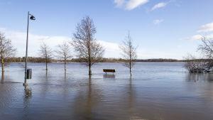Mereltä noussut vesi tulvii Arabianrannassa