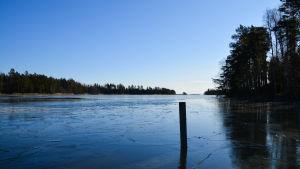 Man ser över ett sund, täckt av ett tunt istäcke, mot en trädbevuxen ö några hundra meter bort. Både havet och himlen är blå. En påle att förtöja båtar vid sticker upp ur isen.