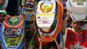 Barn på Filippinerna demonstrerar med målade badkar mot genmodifierat så kallat gyllene ris.