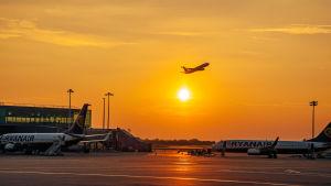 flygplan som lyfter från en flygplats i solnedgången