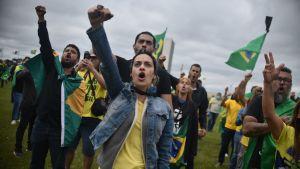 Demonstranter vifrar med Brasiliens flagga och höjer nävarna för att visa sitt stöd för president Jair Bolsonaro