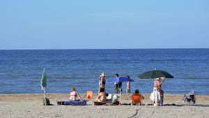 Bild tagen på en strand. I bilden syns ryggarna på några personer som sitter på stranden.