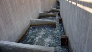 En närbild på fiskväg av betong, vatten syns porla och trappavsatser
