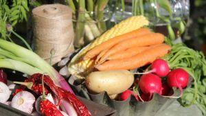 Färglada grönsaker, morötter, rädisor, chili, samt jutesnöre.