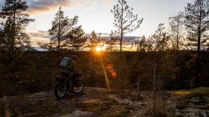 Terrängcykling skogen då solen sjunker i horisonten.
