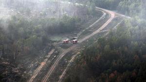 En skogsbrand rån ett helikopterperspektiv. På bilden syns en väg i en skog där brandrök sprids.