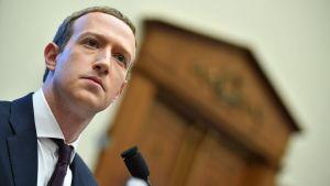Foto på Facebooks grundare Mark Zuckerberg