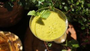 Grön mocktail dekorerad med citronmelissblad.