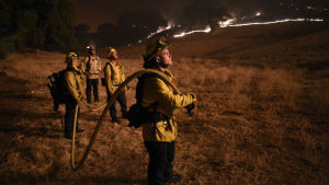 Fyra brandmän står och iaktar en skogsbrand som rasar i bakgrunden