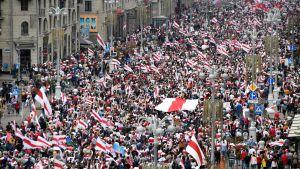 Demonstranter med röd-vita flaggor marscherar längs en gata