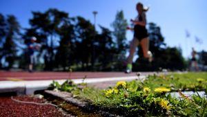 Löpare som springer på en löparstadion. Löparen är suddig.