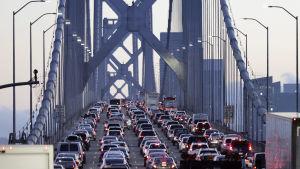 Trafik på bron Golden Gate i San Francisco, USA