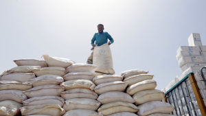 Matsäckar i Jemen. En person står på de uppradade vita matsäckarna.