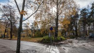 Här ska man grunda en minneslund på Borgå begravningsplats