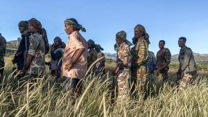 Amhariska milismän som strider på regeringens sida i Tigray, här fotograferade under träning den 10 november.