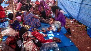 Etiopier som flyr kriget i regionen Tigray. Flyktinglägret Um Rakuba i Sudan 16.11.2020