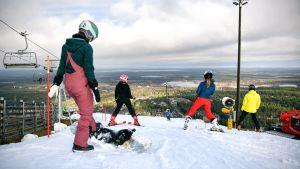 lappland, turism, skidåkning