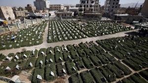 Krigsgravar i Jemen