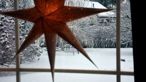 Julstjärna i fönstret