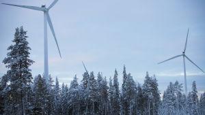 Tornion Kitkiäisvaarassa kaksi tuulivoimalaa