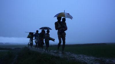 Rohingya flyktingar skickas tillbakar