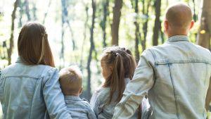 Äiti, isä ja kaksi lasta istuu metsässä.