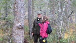 Pirjo Koskinen haastattelee Kari Mielikäistä Suomen vanhimman puun juurella