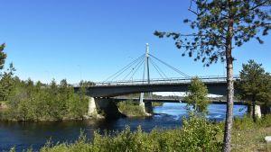 Silta yli Torniojoen