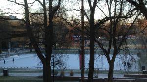 Utsikten från arbetsrummet. Vasaparken finns i många berättelser