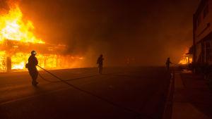 Minst 2 000 byggnader har förstörts i och omkring staden Paradise i norra Kalifornien