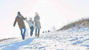 Mamma, pappa, barn i ett snöigt landskap.