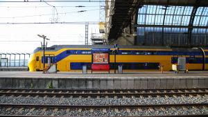 Ett tåg i gult och blått på Amsterdam Centraal.