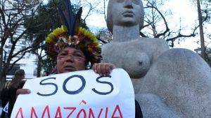 En vkinna demonstrerar mot avskogningen i Amazonas regnskog.