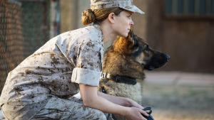 Nainen sotilaspuvussa istuu penkillä vieressään saksanpaimenkoira.