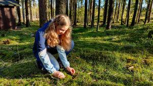 En flicka sitter och studerar en bädd av mossa i en skogsglänta.