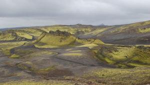 Laki-vulkanen på Island.