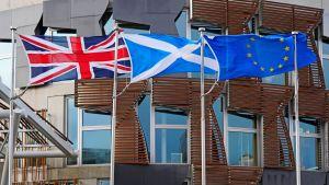 Storbritanniens, Skottlands och EU:s flaggor utanför Skottlands parlament.
