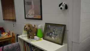 en hylla vid ett hunddagis med tavlor och böcker i och runtom den