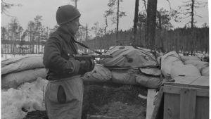 En soldat står i en skyttegrav. Skog syns i bakgrunden.