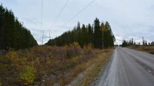 Fingrids linje går rakt igenom det påtänkta vindkraftsområdet i Purmo.