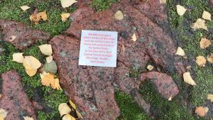 En plakett berättar för flanörerna att de inte tittar på vilken sten som helst.
