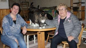 Två kvinnor sitter vid ett bord och ler och tittar in i kameran. En katt står på bordet mellan dem.