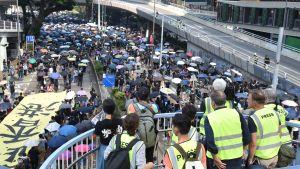 Journalister står och tittar ut över mängder med människor med paraplyn