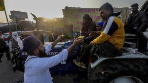 En indisk jordbrukare överräcker mat till demonstrerande jordbrukare i Haryana i närheten av New Delhi, Indien 14.12.2020. Protest mot nya jordbrukslagar som gagnar storföretag