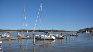 Segelbåtar ligger förtöjda vid en brygga.